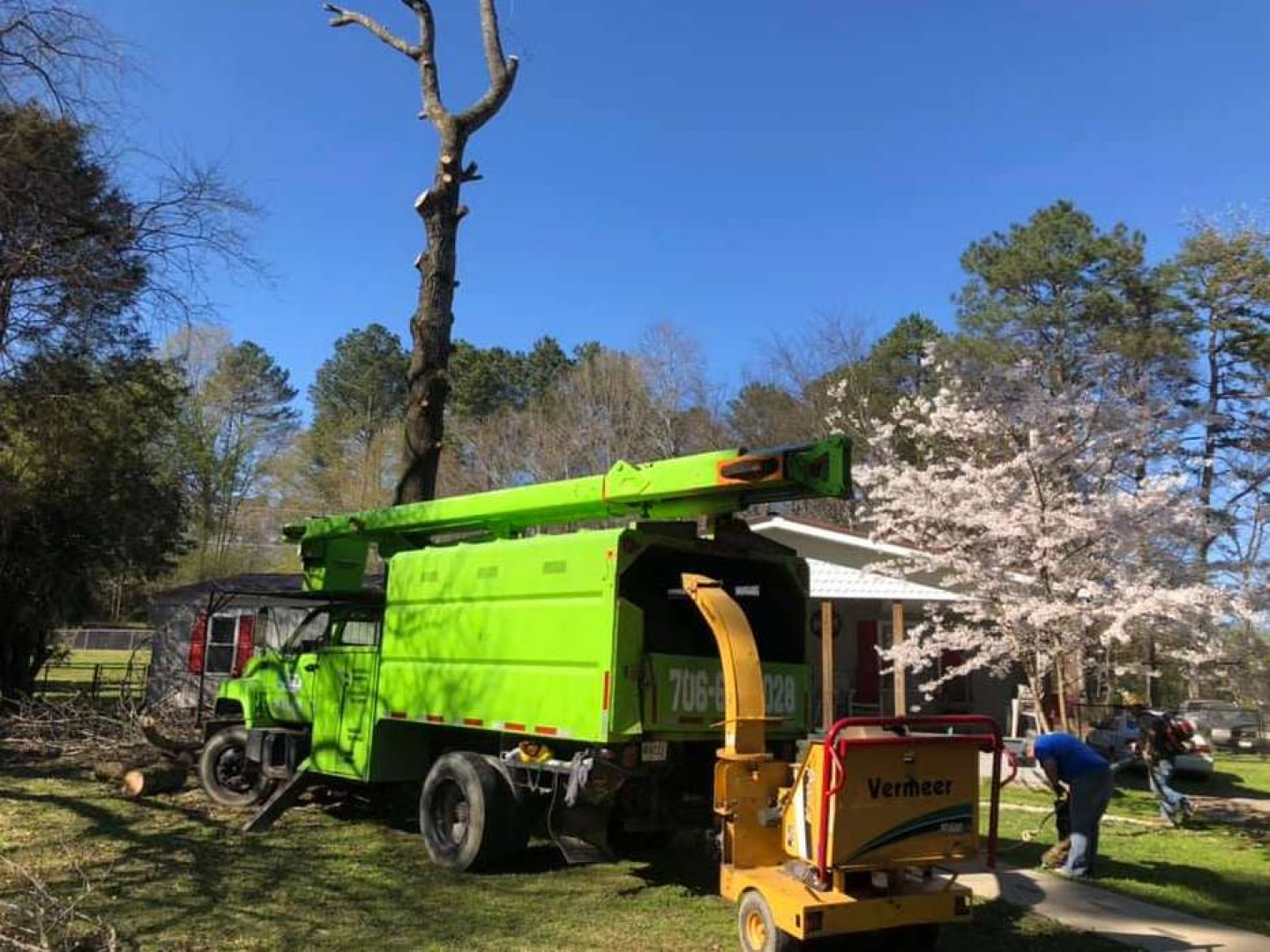 tree care calhoun ga